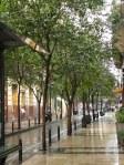 Streets of Saragossa