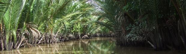 Mekong canals