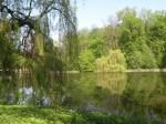 Czerniejewo park